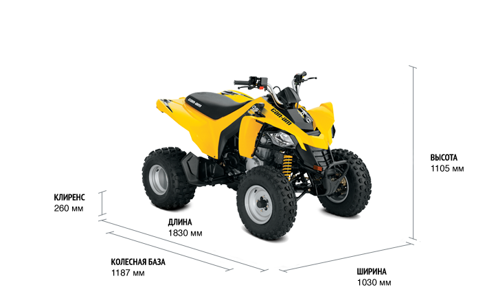 BRP Can-Am DS 250 (2018 м.г.)