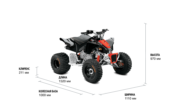 BRP Can-Am DS 90 X (2018 м.г.)