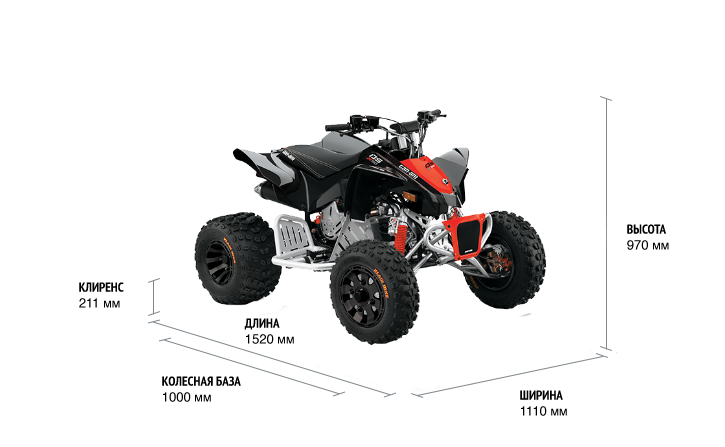 Can-Am DS X 90 2021 м