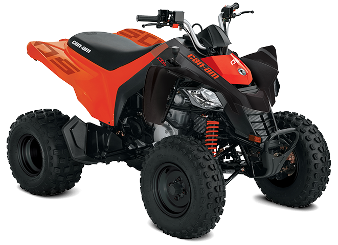 Can-Am DS 250 2022